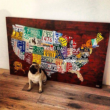 Map of USA with Bulldog